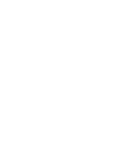 Audi Customer App upgrade